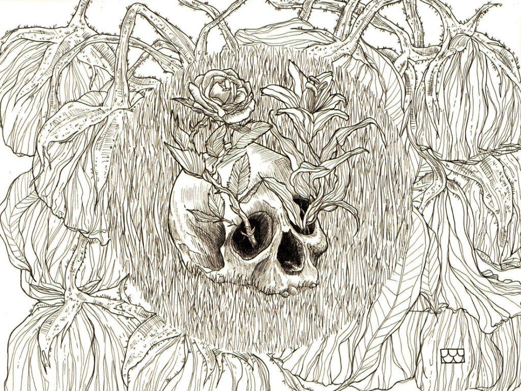 skull-puralinea
