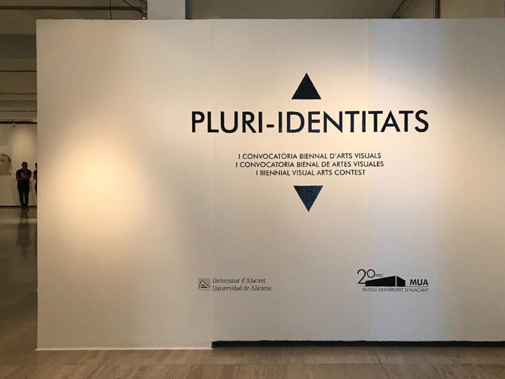 Proyecto Identidades, Bienal Pluri-identitats. Alicante.